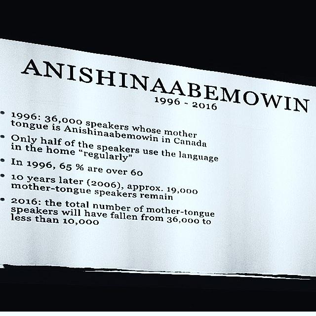 Anishinaabemowin_stats